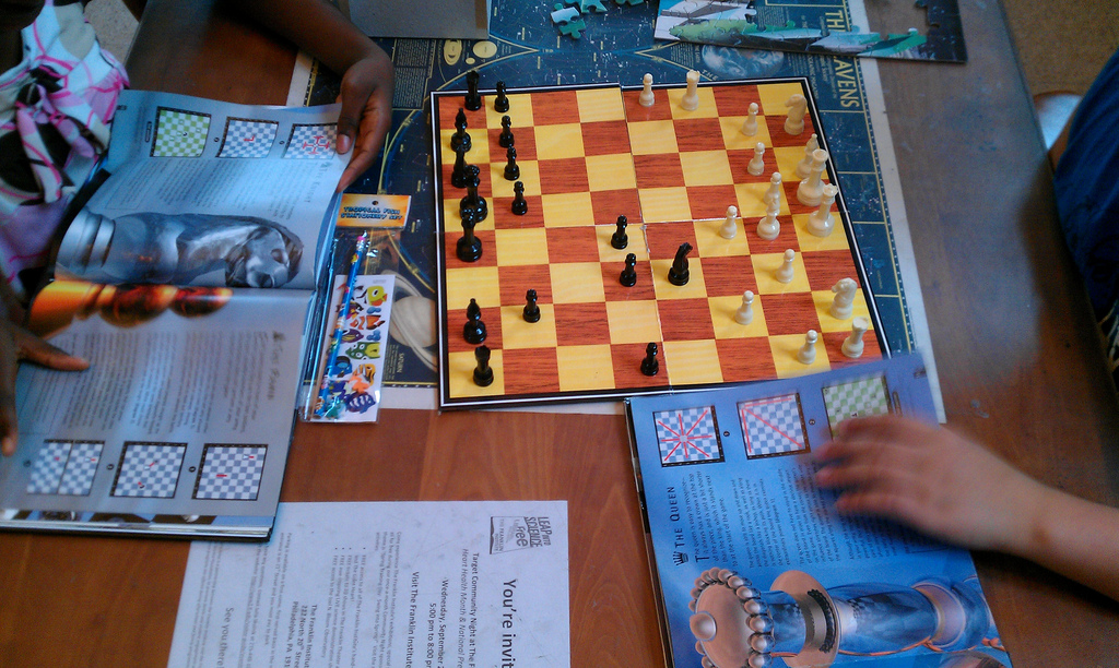 Professional chess education